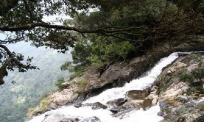 Bạch Mã tiếng gọi thiên nhiên hoang dã