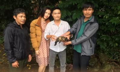 Trung tâm Cứu hộ, bảo tồn và phát triển sinh vật Vườn quốc gia Bạch Mã tiếp nhận và tái thả cá thể Rùa núi viền từ người dân tình nguyện bàn giao