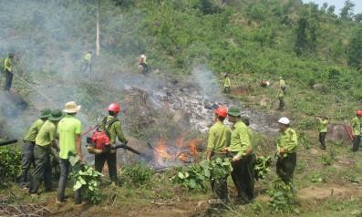 Vườn quốc gia Bạch Mã tổ chức diễn tập phòng cháy, chữa cháy rừng năm 2016