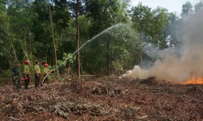 Vườn quốc gia Bạch Mã tổ chức diễn tập chữa cháy rừng  và cứu hộ, cứu nạn năm 2018